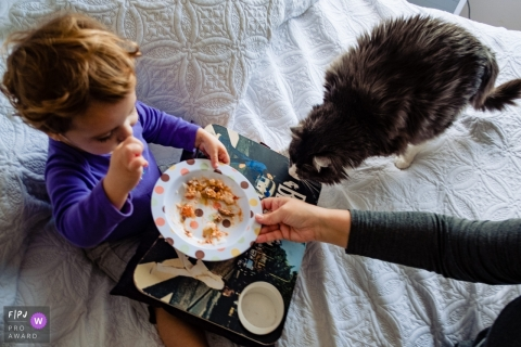A cat is curious about a little boy's cereal in this photo by a Rio Grande do Sul, Brazil family photojournalist.
