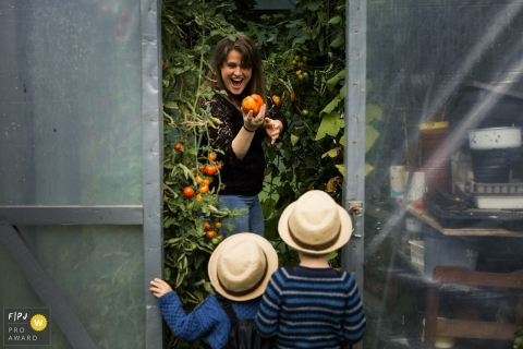 Photo of a mother showing a tomato to two young boys in hats as she stands in a greenhouse, by a Denmark family photojournalist.