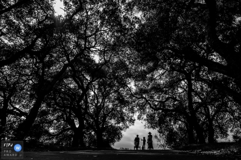 Black and white family photo of a child and two women walking down a road surrounded by trees by a San Francisco, CA family photojournalist.