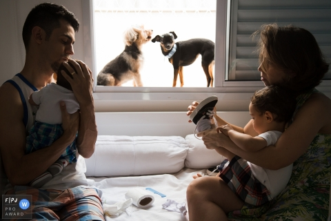 A mother and father hold their two baby boys while their dogs watch from the window sill in this picture captured by a Sao Paulo family photojournalist.