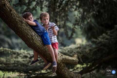 Two young brothers hang out on a large tree branch in this photo recorded by a France award-winning, documentary-style family photographer.