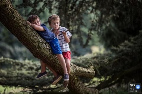 Deux jeunes frères traînent sur une grande branche d'arbre sur cette photo enregistrée par un photographe de famille de style documentaire primé en France.