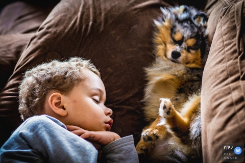 A little boy sleeps on a couch with his puppy in this FPJA award-winning picture by a Sao Paulo, Brazil family photographer.
