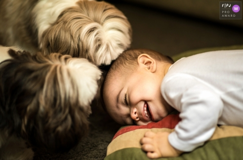 A baby lays on the ground laughing as two small dogs sniff his head in this FPJA award-winning picture by a Rio de Janeiro, Brazil family photographer.