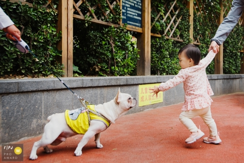 A dog and a little girl both try to reach each other in this FPJA award-winning image captured by a Shanghai, China family photographer.