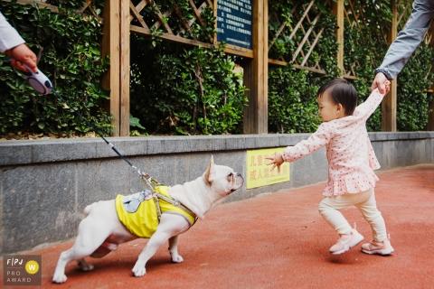 Un chien et une petite fille tentent tous deux de se toucher dans cette image primée au FPJA, capturée par un photographe de famille de Shanghai, Chine.