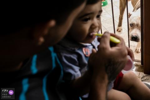 Un père nourrit son fils pendant que le chien regarde dans la pièce voisine de cette image primée au FPJA, capturée par un photographe de la famille de Rio de Janeiro.