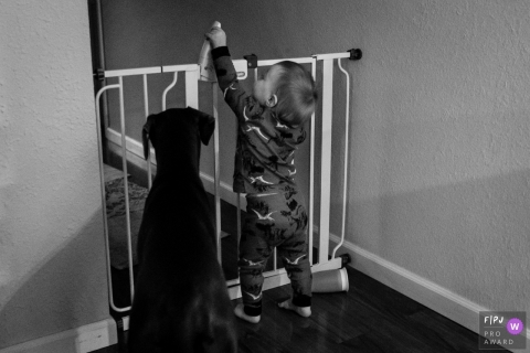 A dog watches as a little boy tries to open a safety gate in this documentary-style family photo captured by a Washington photographer.