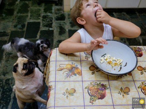 Two dogs watch excitedly as a little boy eats popcorn in this family picture by a Sao Paulo, Brazil photographer.