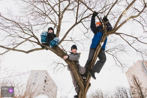 Three boys climb a tree together in this photograph by a Saint Petersburg, Russia documentary family photographer.