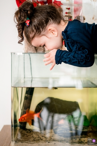 Nantes Loire-Atlantique little girl likes her fish in the tank at home