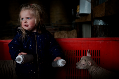 William Bazlinton is a family photographer from Dorset