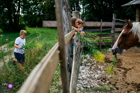 Slovenia farm life documentary-style family photography session of children standing at a fence feeding a horse