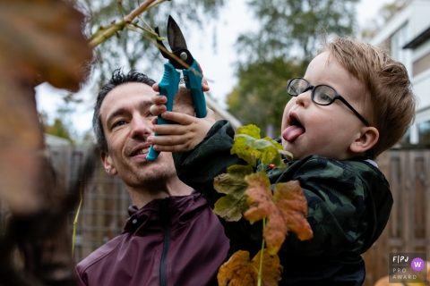 Noord Brabant Day in the Life documentary family photo of a small boy pruning the tree branches with dad