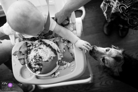 Moment driven Atlanta family photojournalism image of a boy feeding his dog cake