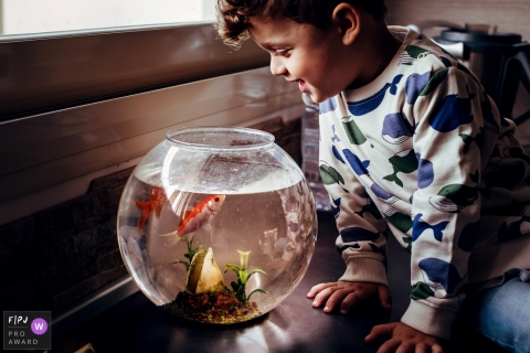 Moment driven Genoa family photojournalism image of a young boy talking to his fish in a bowl