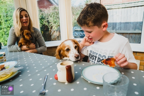 Norfolk day in the life photo at breakfast time with the pet dog looknig over thet table to see the food