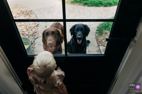 Madison, WI family image of a girl looking out a window at two dogs looking in