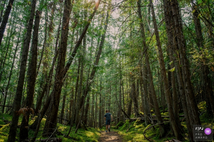 A young boy walks on a path through a forest in this photo by a British Columbia family photographer