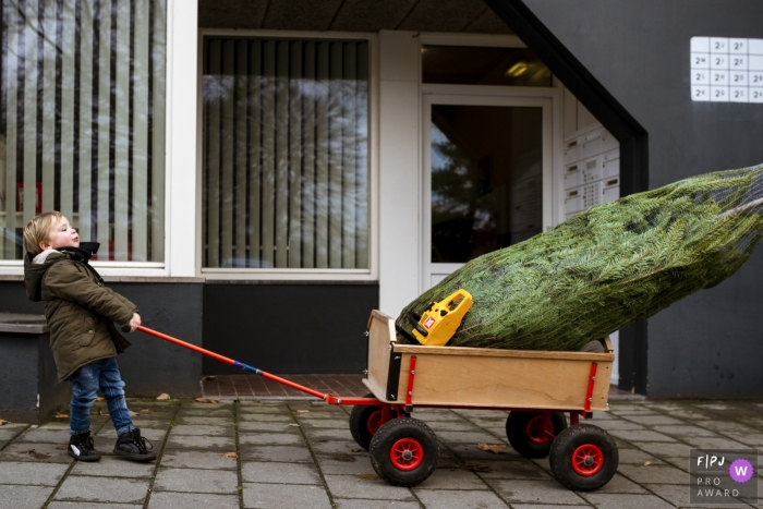 A little boy tries to pull a pine tree in his cart in this FPJA award-winning picture by a Holland family photographer.