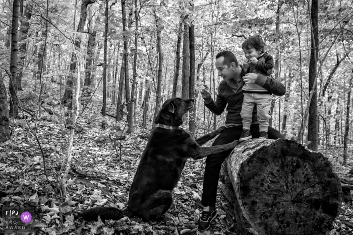 A father holds his son on top of a log while telling his dog to sit in this award-winning photo by a Montreal, Quebec family photographer.