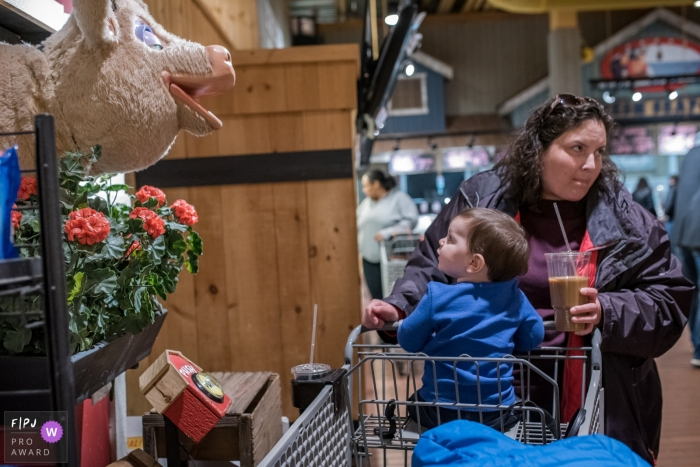 A little boy looks up at an animatronic pig as he sits in a grocery cart in this FPJA award-winning image captured by a Connecticut family photographer.