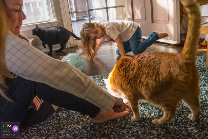 A mother and daughter play with their two cats in this image created by a Los Angeles, CA family photographer.