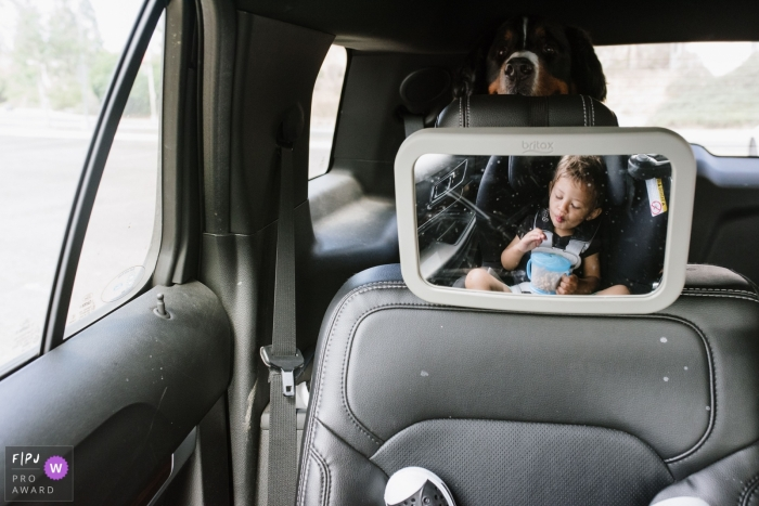 A dog peeks over the car seat at a little boy in this photograph created by a Los Angeles, CA family photojournalist.
