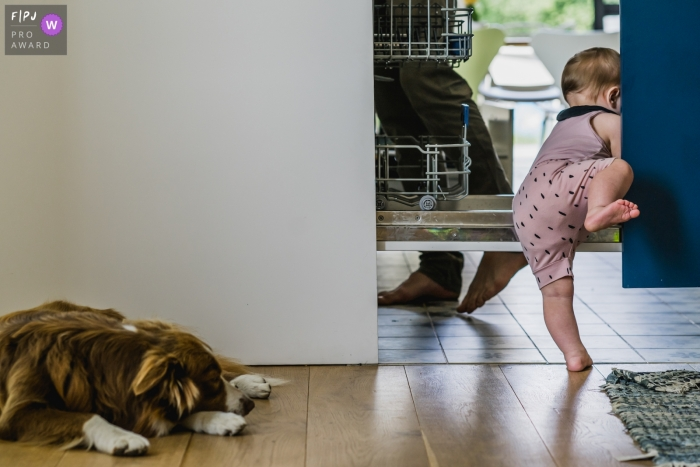 Flanders Children Photography: I want to get through so I'll take the difficult road - Limburg documentary-style in-home photography with kids and dogs