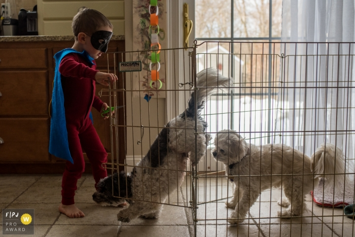A young boy, dressed as a superhero, opens the dogs' crate and they come bounding out, thanks to their savior. - Connecticut family photography