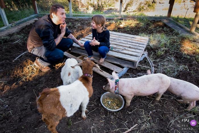 Californie Photojournalism Family - Des moments de plaisir dans la petite ferme avec des cochons, des chèvres et des enfants.