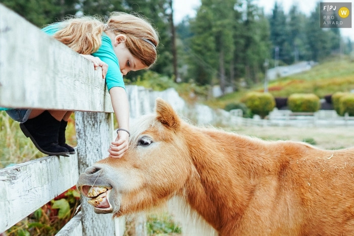 Girl feeds a horse on a farm in Washington State. Seattle family photography.