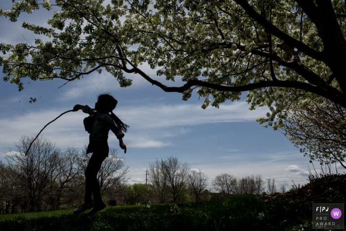 Silhouette of kid jumping up trying to knock the leaves from a tree | Colorado Family Photographer