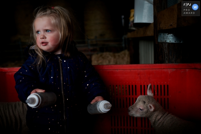 Dorset Family Photographer | Feeding the lambs in a crate on the family farm