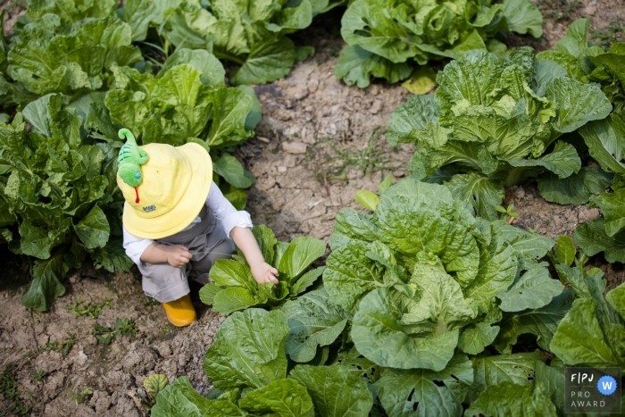 Hangzhou City garden documentary-style family photo shoot of a young boy in the vegetable field in China