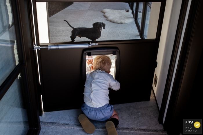 Day in the Life photography session at home inFlanders showing a child crawling through the doggie door