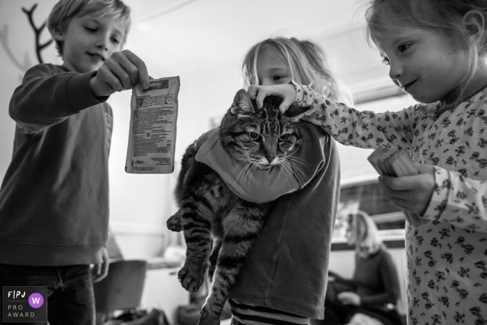 Moment driven Gelderland family photojournalism image of three children with their cat